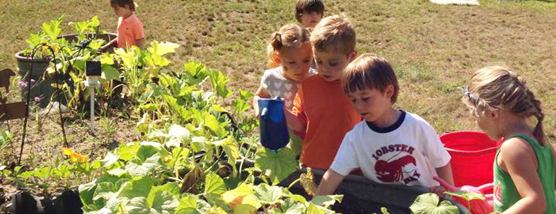 canterbury-creek-farm-preschool-grand-rapids-mi-children-learning-gardening