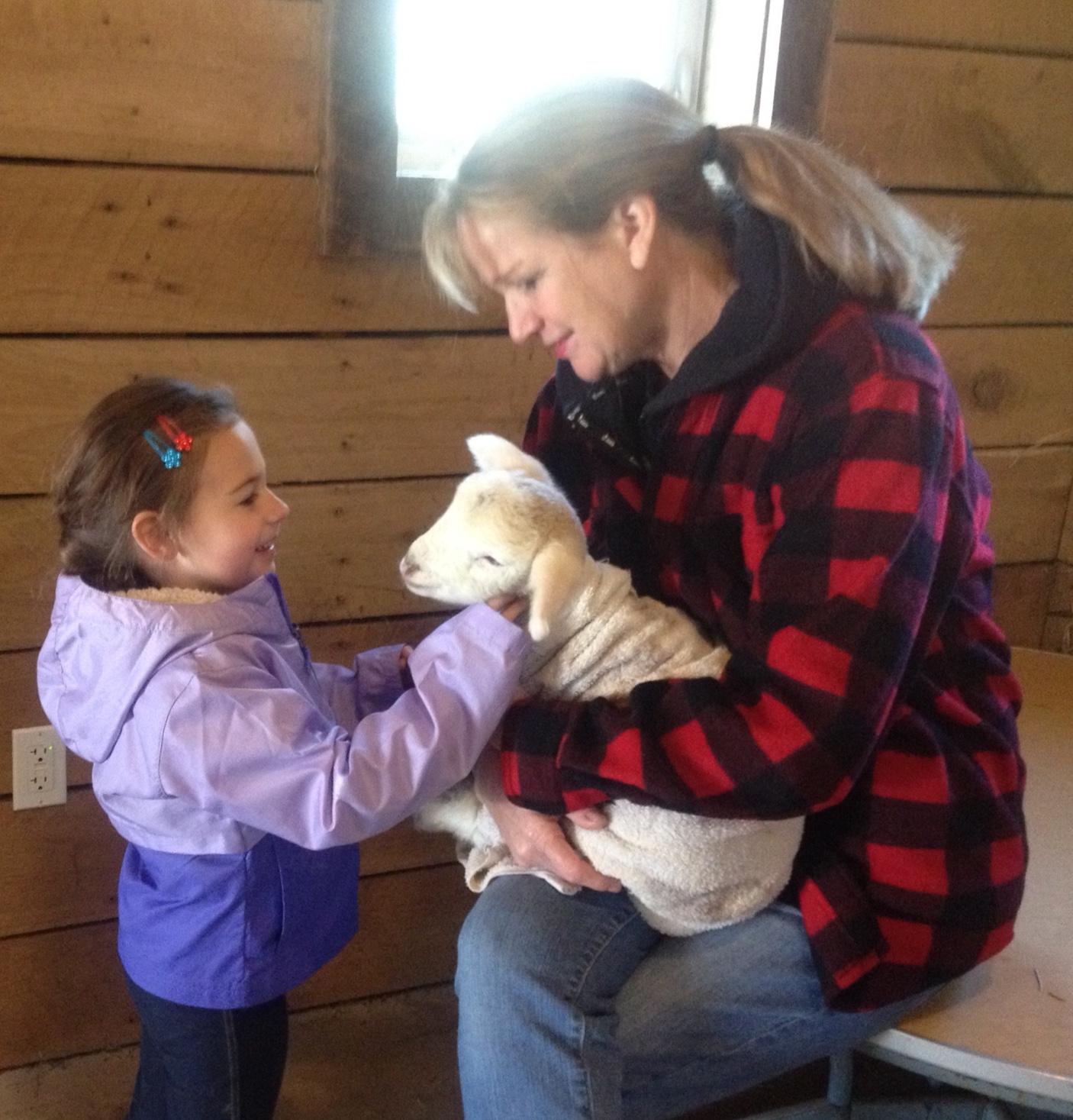 Petting the Lamb