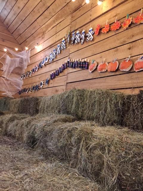 Canterbury-Creek-Farm-Preschool-Barn-2