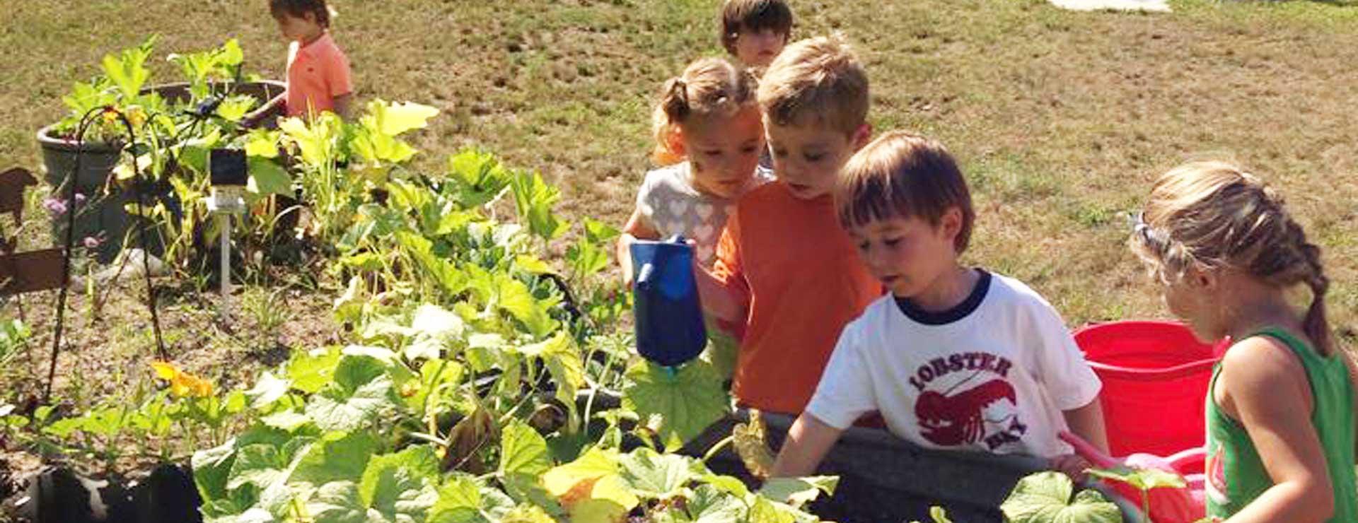 canterbury-creek-farm-preschool-grand-rapids-mi-children-learning-gardening